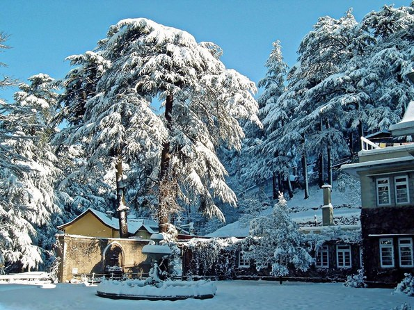 travel-guide-blog-India_Shimlas-Snowfall