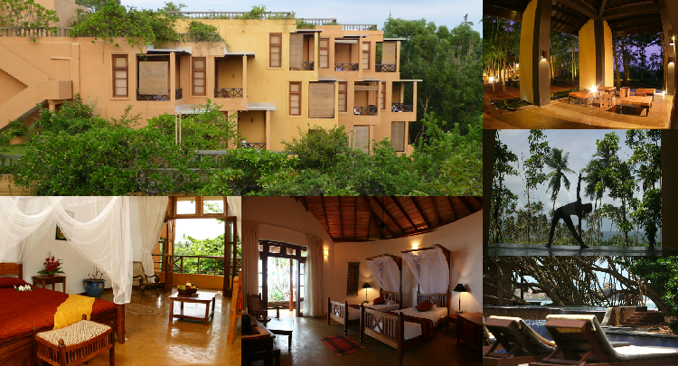 Barberyn Beach Ayurveda Resort: Holistic Healing in Paradise